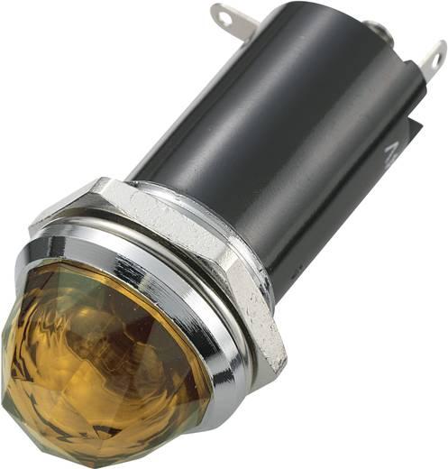 Jelzőlámpa 24 V/DC Borostyán, SCI 28430c1000