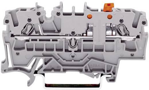 WAGO 2 eres csatlakozó leválasztó, 0,25 - 2,5 mm², szürke, TOPJOB®S CAGE CLAMP® - 2002-1671