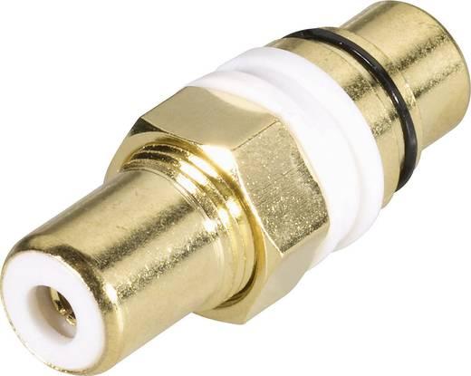 Beépíthető RCA adapter, aranyozott, belül szigetelt, piros