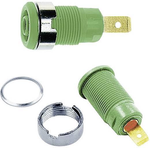 Beépíthető hüvely, 4 mm, SLB4-F6,3 zöld