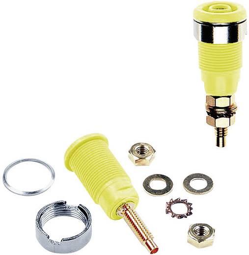 Beépíthető hüvely, 4 mm, SLB4-G zöld/sárga