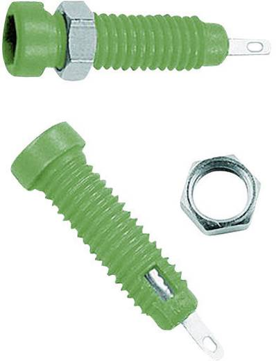 Beépíthető hüvely 2 mm, LB2-IF zöld