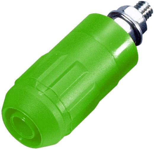 Beépíthető hüvely, 4 mm, XUB-G zöld