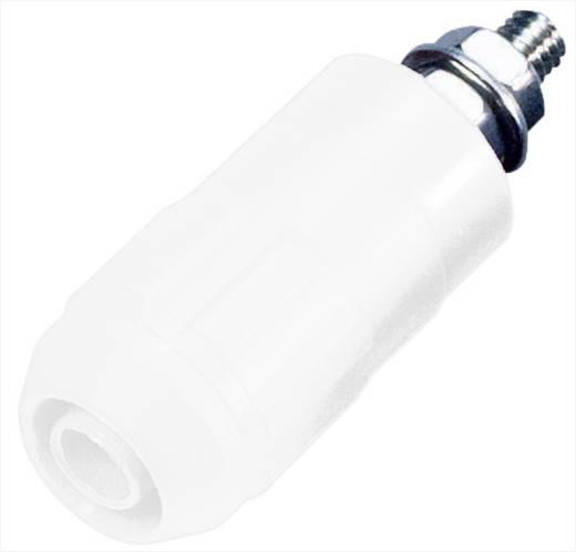 Beépíthető hüvely, 4 mm, XUB-G fehér