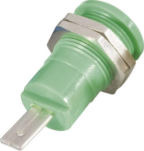 Biztonsági csatlakozó hüvely belül 4 MM zöld
