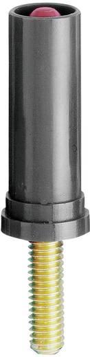 MultiContact beépíthető biztonsági banándugó, csavaros, Ø 4 mm, fekete, SA400-VI