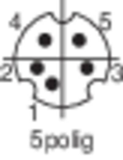 Miniatűr DIN kerek csatlakozó Dugó, egyenes Pólusszám: 5 Fekete BKL Electronic 204003 1 db