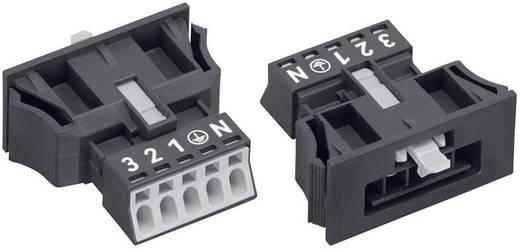 Hálózati csatlakozó dugó, egyenes, pólusszám: 5, 16 A, fekete, WAGO 890-715