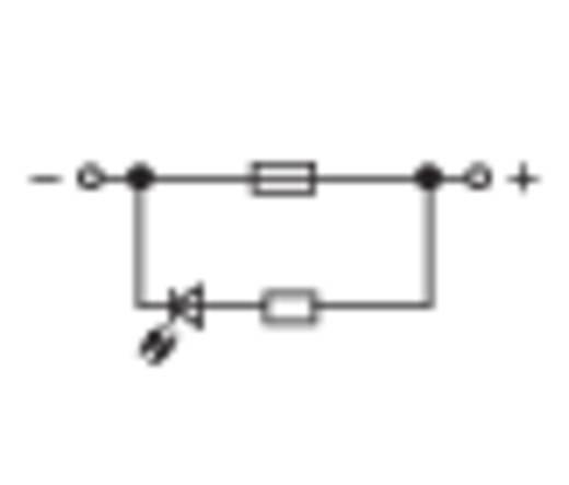 WAGO 2 vezetékes autós összekötő, biztosítékkal, 0,5 - 6 mm², szürke, TOPJOB®S CAGE CLAMP® - 2006-1681/1000-429