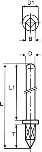 Dugó hegy Négyszögletes bepréselhető szár 1365b.68 Vogt Verbindungstechnik Tartalom: 100 db