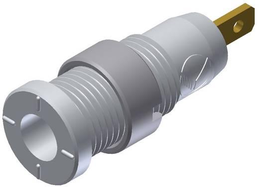 Biztonsági hüvely fehér MSEB 2610 2 mm