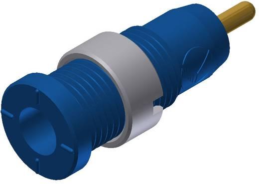 Biztonsági hüvely kék MSEB 2630 AU 2 mm