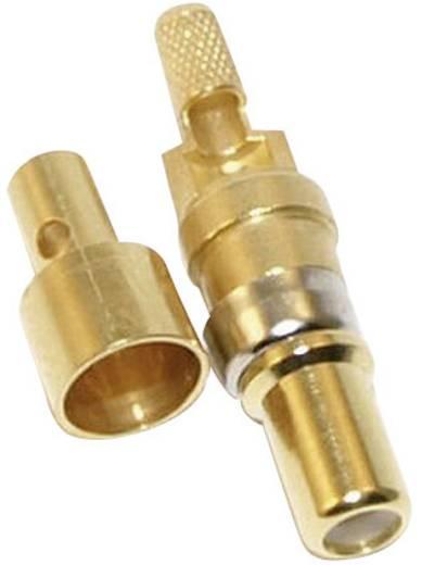 Koaxiális tű kontaktus, aranyozott Conec 131J20029X