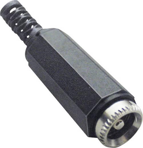 Kisfeszültségű csatlakozó Alj, egyenes 5.5 mm 2.5 mm BKL Electronic 072209 1 db