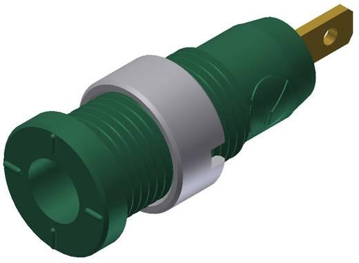 Biztonsági hüvely zöld MSEB 2610 2 mm