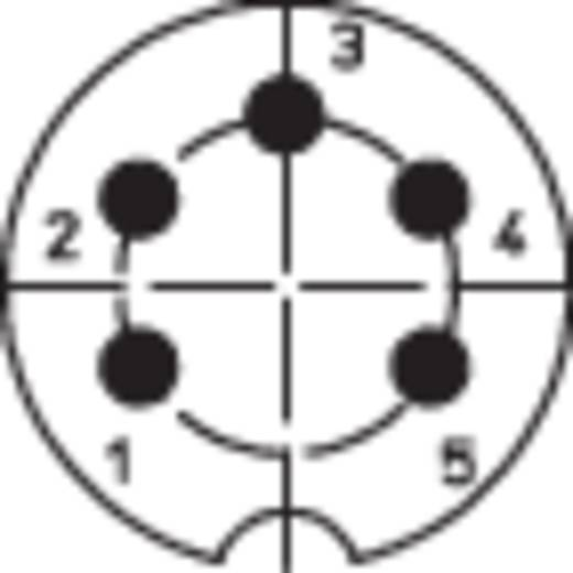 DIN beépíthető alj, 5 pólusú, nyáklapba építhető, 0307 05-1