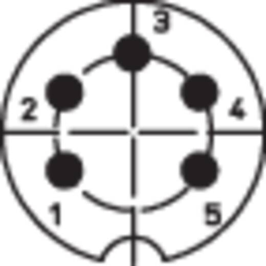 DIN dugó, 5 pólusú, szögletes, WSV 50/6