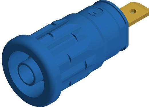 SKS Hirschmann beépíthető biztonsági banánhüvely, Ø 4mm, kék, SEP 2610, 972 361-102