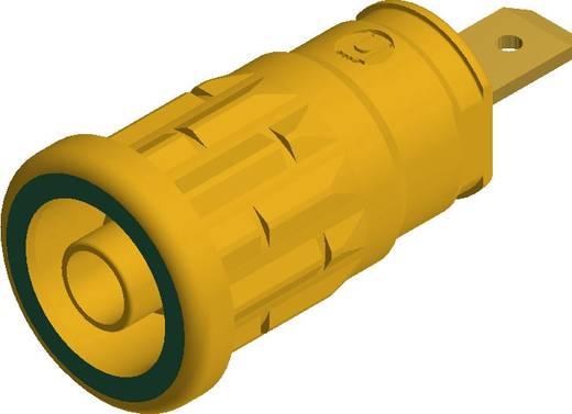 SKS Hirschmann beépíthető biztonsági banánhüvely, Ø 4mm, zöld-sárga, SEP 2610, 972 361-188