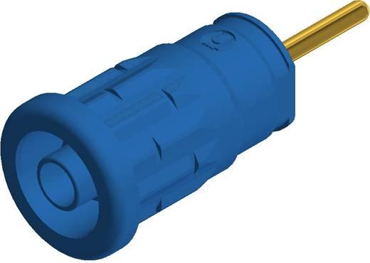 SKS Hirschmann beépíthető biztonsági banánhüvely, Ø 4mm, kék, SEP 2630