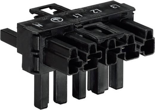 Hálózati T elosztó, pólusszám: 3, fekete, WAGO 770-621