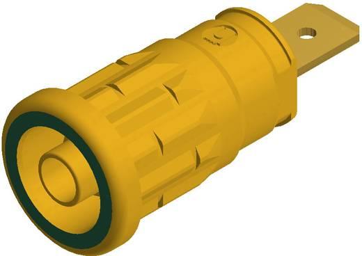SKS Hirschmann beépíthető biztonsági banánhüvely, Ø 4mm, zöld-sárga, SEP 2620
