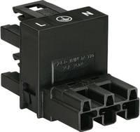 Hálózati H elosztó, pólusszám: 3, fekete, WAGO 770-636 WAGO