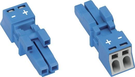 Hálózati csatlakozó alj, egyenes, pólusszám: 2, 16 A, kék WAGO 890-1102