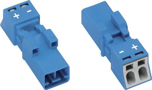 Hálózati csatlakozó dugó, egyenes, pólusszám: 2, 16 A, kék WAGO 890-1112