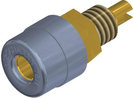 Beépíthető banándugó aljzat 4mm-es szürke SKS Hirschmann BIL 20 AU