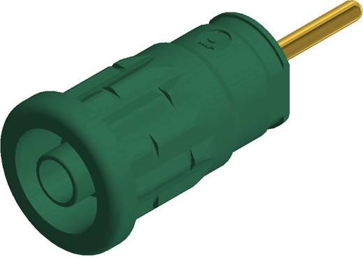SKS Hirschmann beépíthető biztonsági banánhüvely, Ø 4mm, zöld, SEP 2630