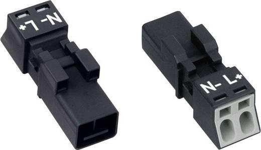 Hálózati csatlakozó dugó, egyenes, pólusszám: 2, 16 A Szürke WAGO 890-252