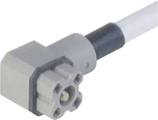 Szerelhető csatlakozó dugó G-sorozatú 4 pólusú szürke G 4 KW 1 F 2M Hirschmann