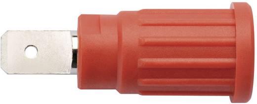 Biztonsági csatlakozó Alj, beépíthető, függőleges stift Ø: 4 mm Fekete Schützinger SEPB 6453 / SW 1 db