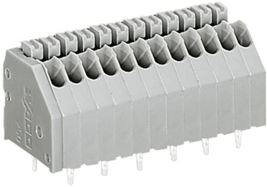 Nyáklap kapocs, 250-es sorozat 250-406CAGE CLAMP®S Raszterméret: 2.5 mm 2 A Szürke WAGO