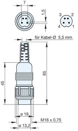 DIN kerek csatlakozóhüvely Dugó, egyenes Pólusszám: 4 Szürke Hirschmann MAS 4100 1 db
