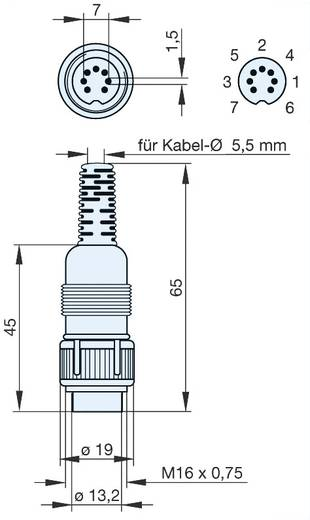 DIN kerek csatlakozóhüvely Dugó, egyenes Pólusszám: 7 Szürke Hirschmann MAS 7100 1 db