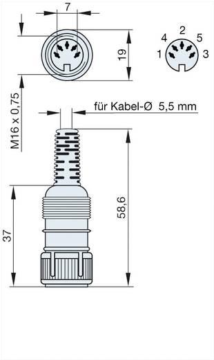 DIN lengő alj 5 pólusú típus: 4 Hirschmann