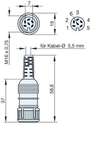 DIN kerek csatlakozóhüvely Alj, egyenes Pólusszám: 6 Szürke Hirschmann MAK 6100 1 db