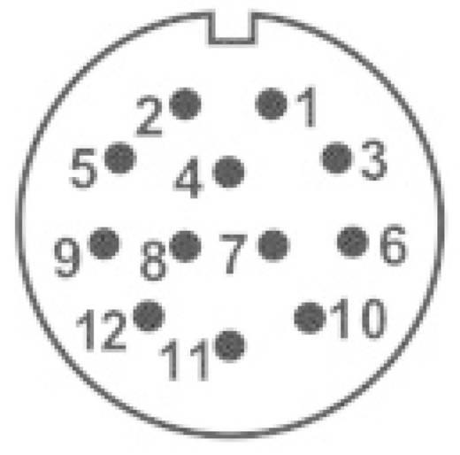 Dugaszolható csatlakozó IP68 SP2111 / S 12 II sorozat Pólusszám: 12 In-Line alj 5 A SP2111 / S 12 II Weipu 1 db