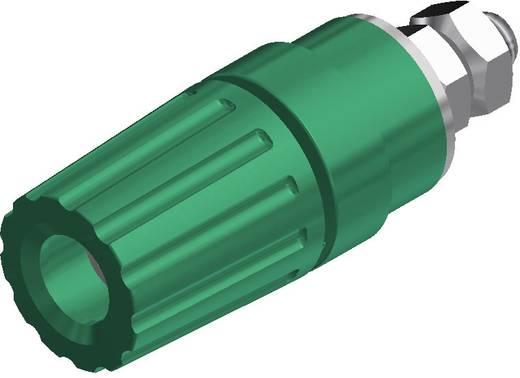 Póluscsatlakozó PKI 110 zöld