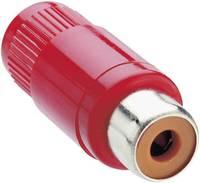 RCA csatlakozó, KTO 1 piros Lumberg