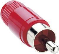 Lumberg STO 1 RCA csatlakozó Dugó, egyenes Pólusszám: 2 Piros 1 db Lumberg