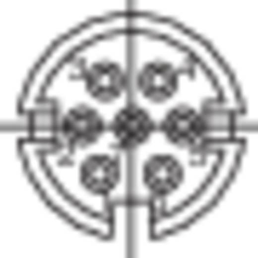 Miniatűr kerek készülék csatlakozó dugó, 7 pól., 5 A, Binder 581-99-2025-00-07