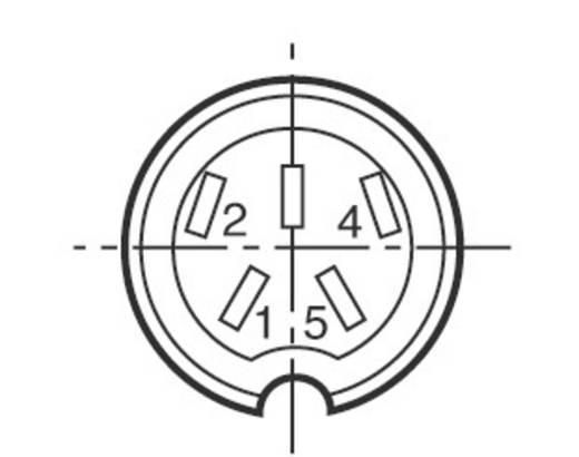 Kábelcsatlakozó 5 pol.. 250 V 10 A, Binder 691-09-0037-00-05