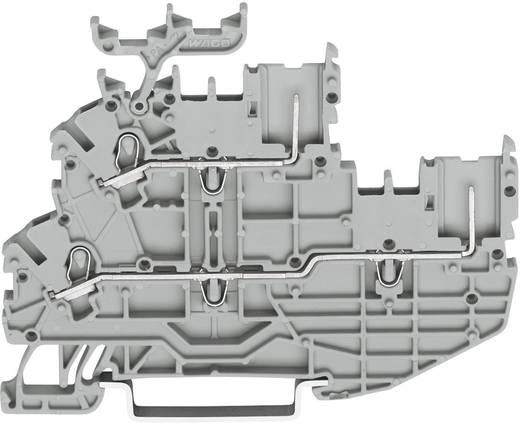 Báziskapocs, 3.5 mm Húzórugó kiosztás: N, L Szürke WAGO 2020-2232 1 db