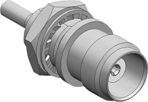 TNC adapter TNC alj - IMSK-2399-051 db