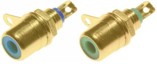 RCA csatlakozó alj, beépíthető, függőleges pólusszám: 2 kék, zöld 2 db