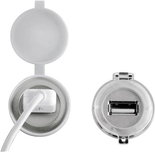 Védősapka az USB-/RJ45-ös beépített csatlakozóaljzathoz, átlátszó, Schlegel KD22RR