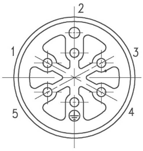 Amphenol C16-3 kerek készülék csatlakozó dugó, 8 pól. , 12 A, C016 10I008 002 1